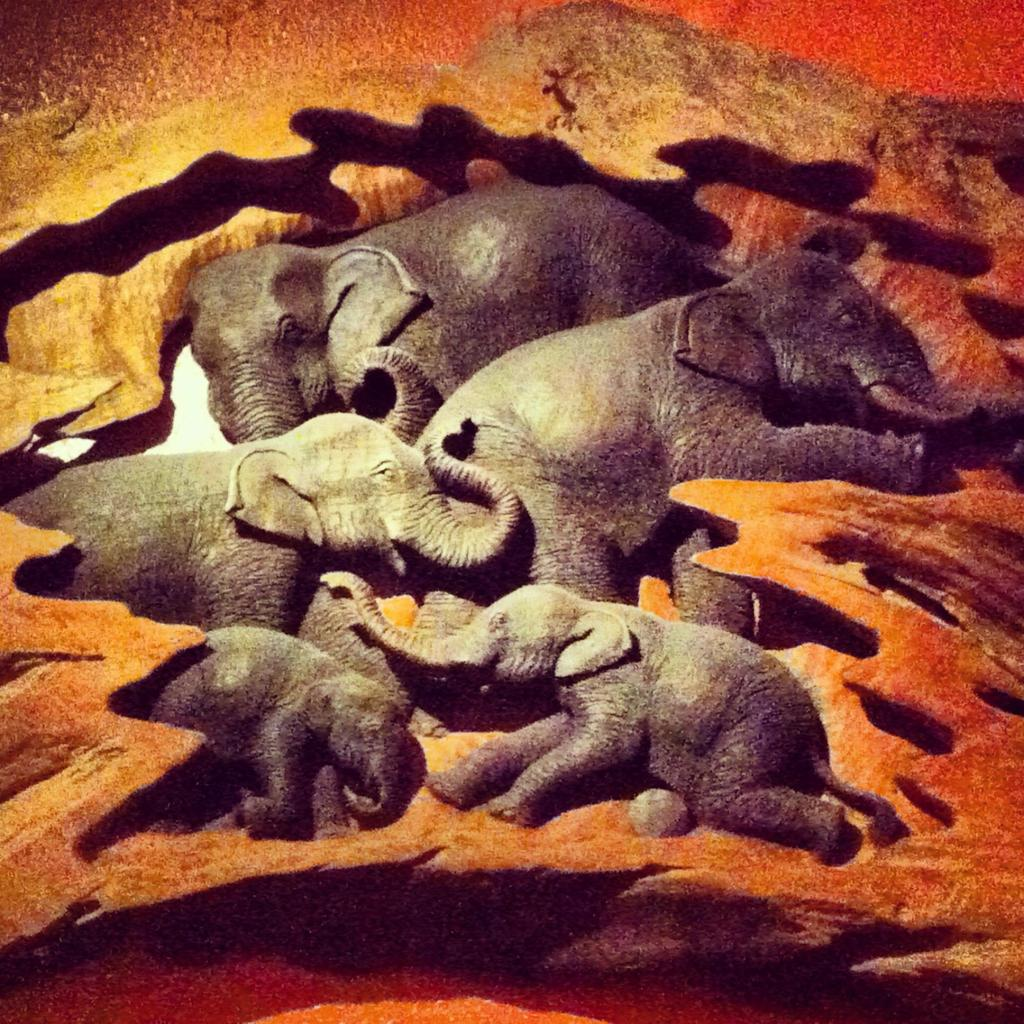 Elephants: Wood Carving